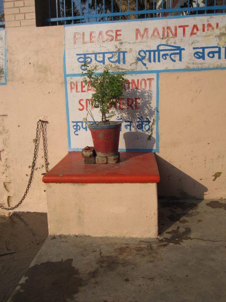 Sakshi Bhav