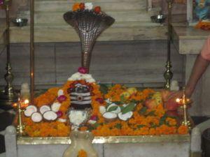 Vishvanath-Lingam Sivananda-Ashram