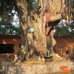 Prurusharthas – Die Motivationen im Leben