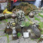Soma – entheogenes Rauschgetränk der Veden