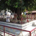 Rudrakshabaum in Haridwar