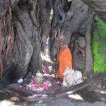Satsang Talk – die 6 inneren Feinde. Arishadvargas