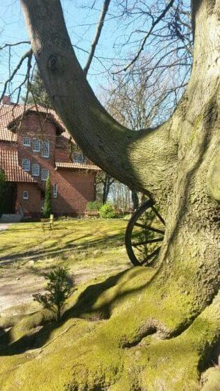 https://vedanta-yoga.de/meditation/page/2/ Meditation - Praxis der Innenschau und Versenkung