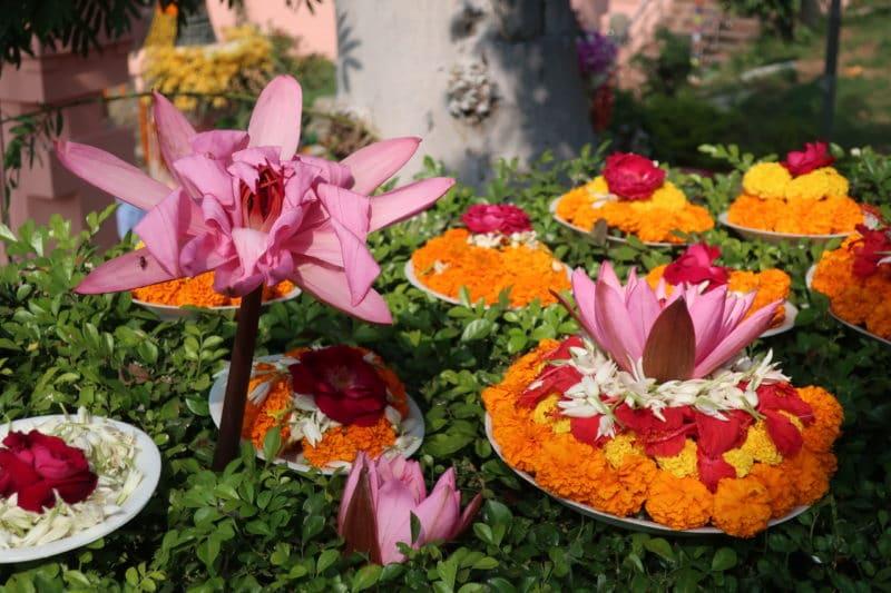 Bhagavad Gita-Kommentar-Indische Philosophie