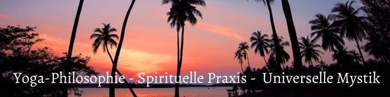 Yoga-Philosophie, Spirituelle Praxis, Universelle Mystik